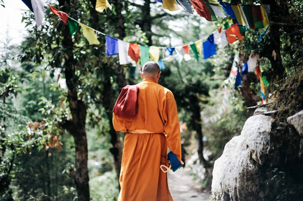 A monk walks beneath the trees shadow, read a lessor known facts about Buddha