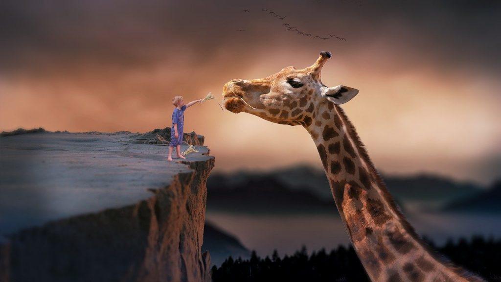 Giraffe-Pix-Pixabay LoveYouFamily.com