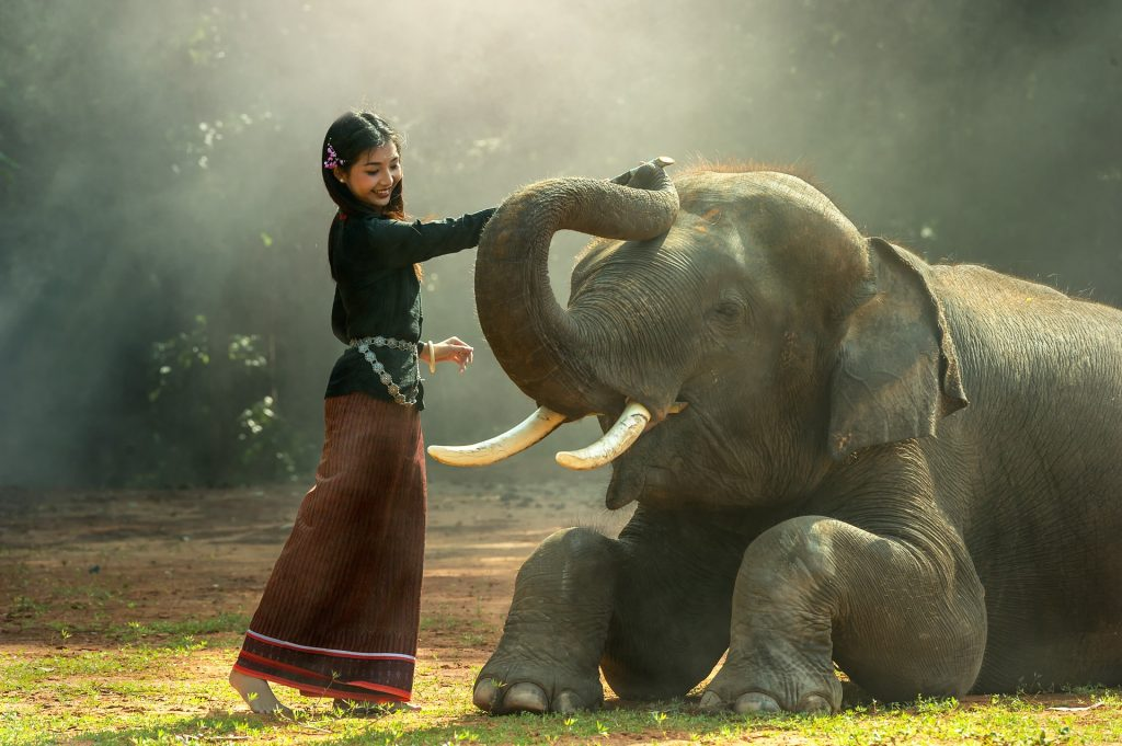 Girl With Elephant-Pix-Pixabay LoveYouFamily.com